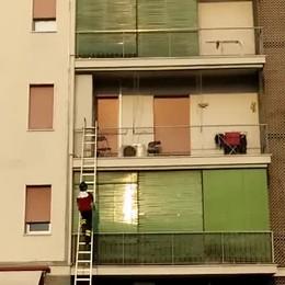 Cucciolo lasciato sul balcone sotto il sole Salvato dai vigili del fuoco a Seriate