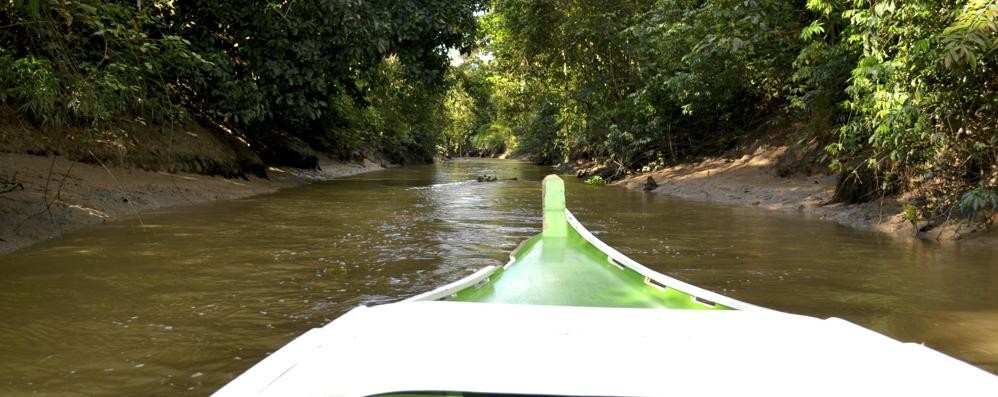 Sulle orme di Sandokan (e di Salgari) nella natura selvaggia del Borneo