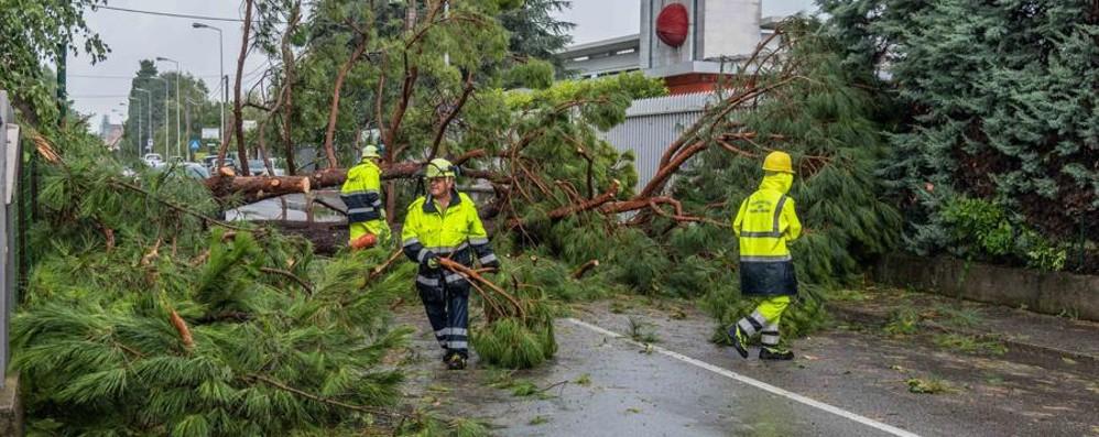 Tromba d'aria, Bergamo conta i danni «Paura e lunghe ore senza luce» - Video