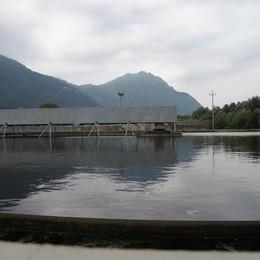 Allarme inquinamento del lago d'Iseo «C'è da ammodernare la rete fognaria»