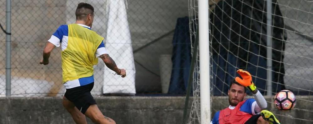 Sportiello e Gomez blindati all'Atalanta? Difficile dirlo fino alla fine del mercato