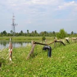 Al parco della Trucca alghe nei laghetti E le staccionate, marce, sono pericolose