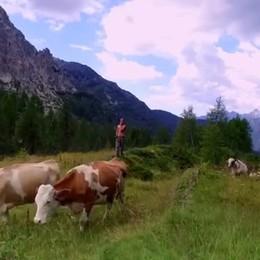 Lo scenario del Calvi visto con il drone Spettacolare video in Valbrembana