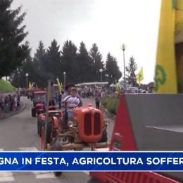 Festa della montagna, agricoltura ferita