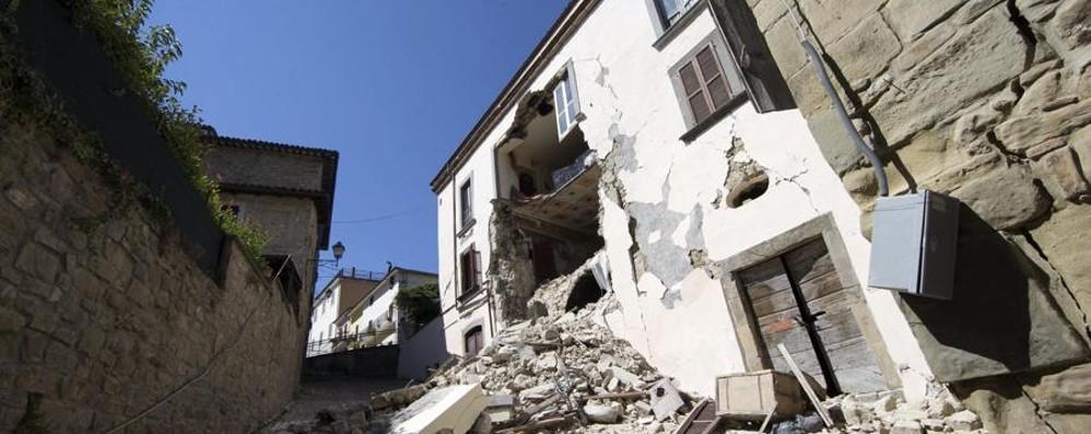 Sale il bilancio delle vittime: 250 Più di 600 scosse, i feriti sono 365 - Video