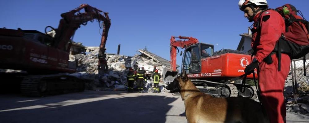 Ecco come si è propagato il terremoto Il video  dell'Istituto nazionale di Geofisica