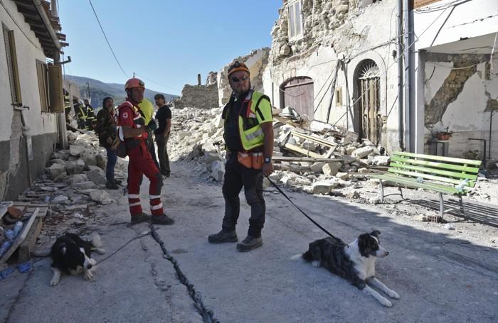 I vigili del fuoco e i cani dell'unità cinofila a Pescara del Tronto