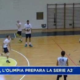 Volley, la Caloni Olimpia Agnelli si prepara al ritorno in A2