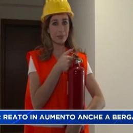 Truffe in aumento anche a Bergamo