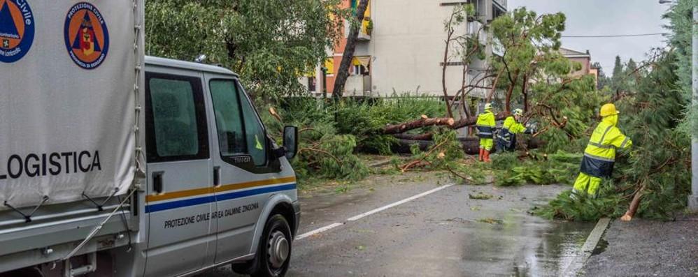 Dalmine,  i danni della tempesta di luglio «Niente tasse per un anno ai colpiti»