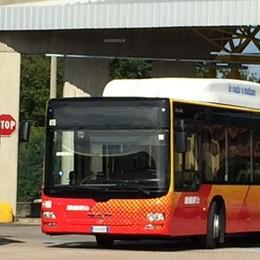 Atb, ecco i nuovi 11 bus autosnodati Ora un terzo della flotta è a metano
