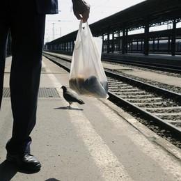 Sciopero dei treni, sono attesi disagi La protesta fino alle 21 di venerdì