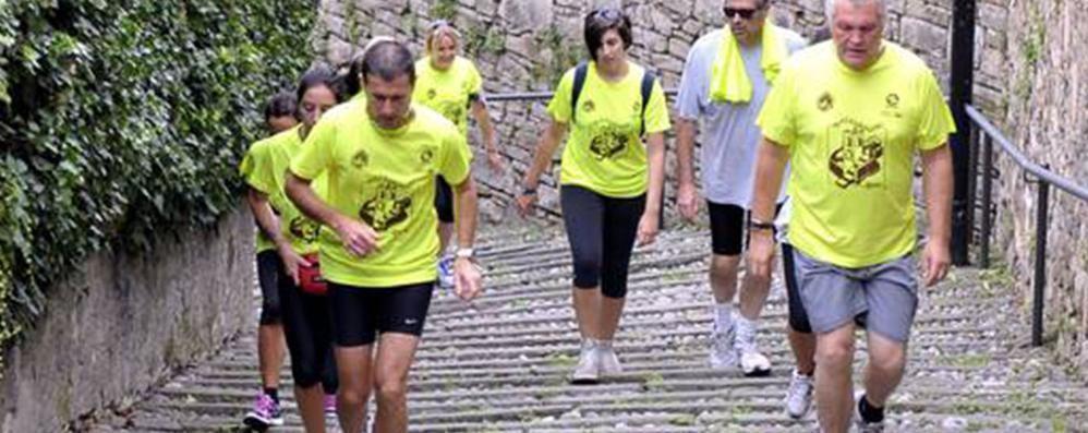 Runners, scaldate i muscoli Iscrizioni aperte alla Millegradini