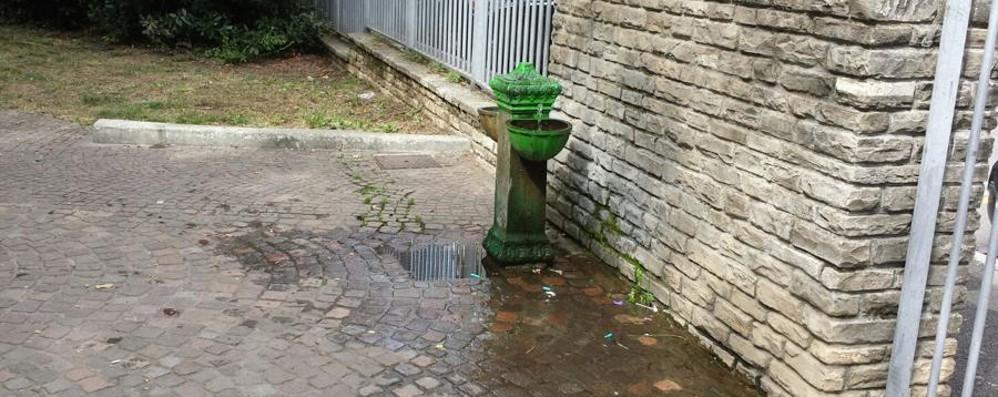 La fontanella che perde da mesi L'acqua è  preziosa, ricordiamocelo