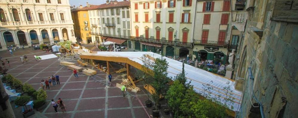 Piazza Vecchia verde, il paesaggista: «Polemiche? È bello scatenare curiosità»