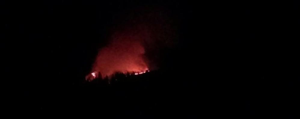 Incendio sul Monte Avaro a Capodanno Fiamme forse innescate dai botti