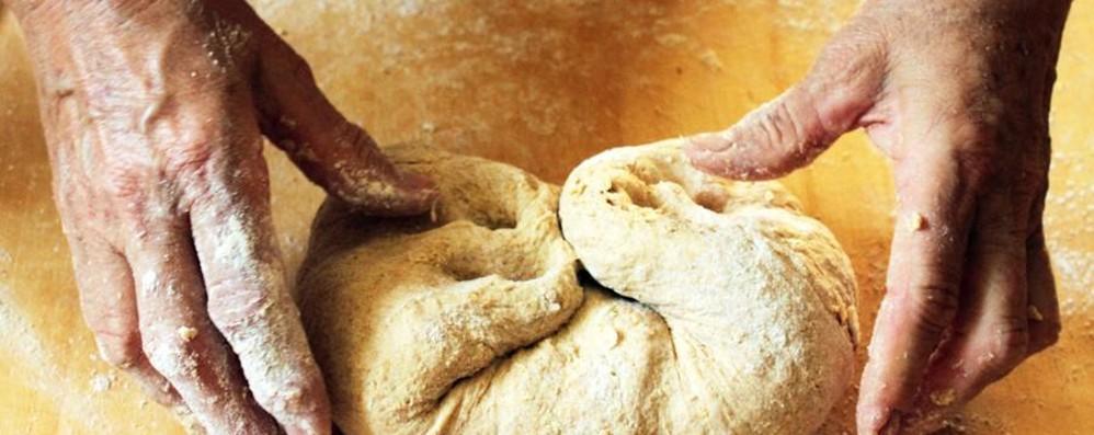 Stop alla giungla del pane che mangiamo Un decreto per distinguere com'è fatto