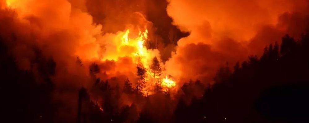 Incendio devastante a Imperia Rinforzi arrivati anche da Bergamo