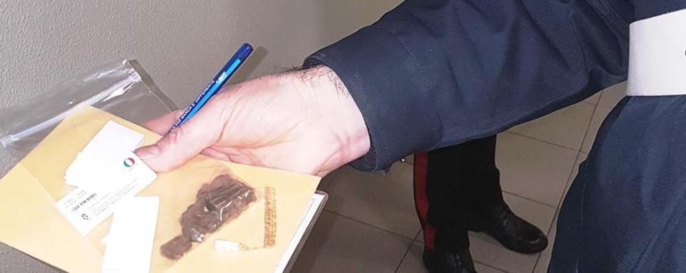 Con i cani controlli antidroga a scuola Treviglio, 15enni con l'hashish in classe