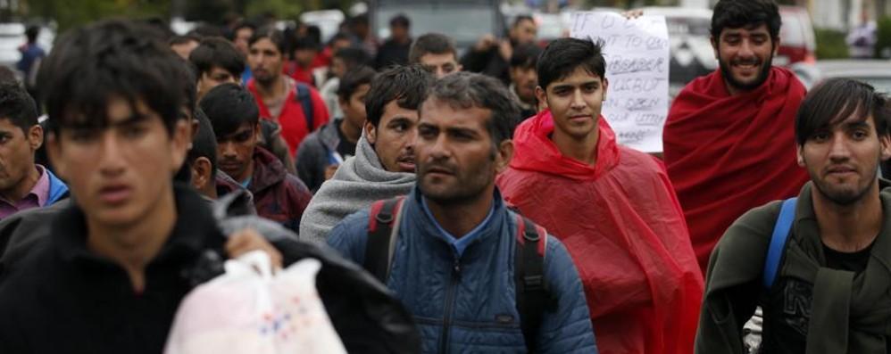 Migranti irregolari Lo stop e gli spot
