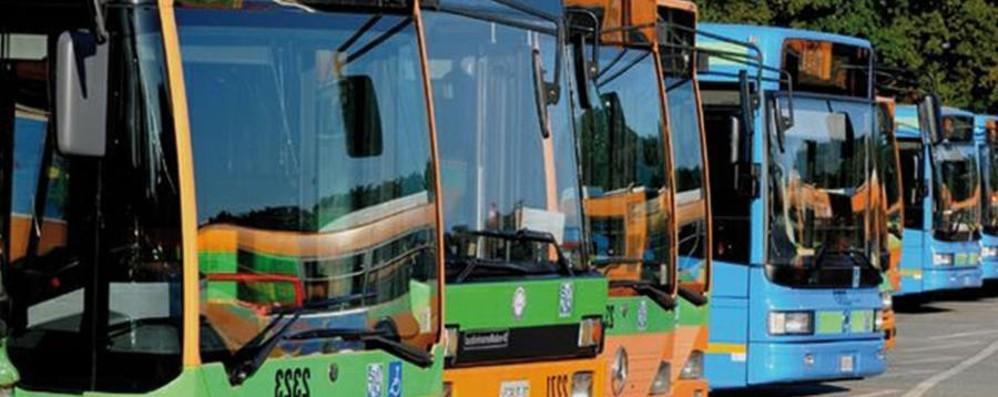 Trasporti, arriva il biglietto smart Si viaggerà in tutta la provincia
