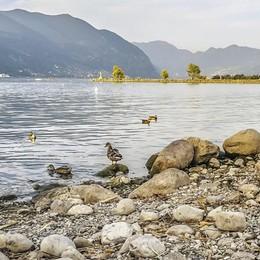 Lago in calo e centrali in affanno Torna l'incubo siccità