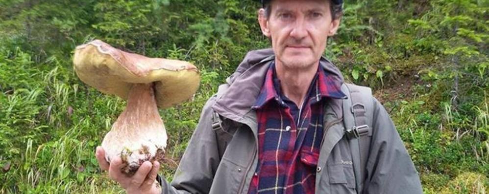 Funghi, che passione a Bergamo E che maxi bottini nei boschi - le foto