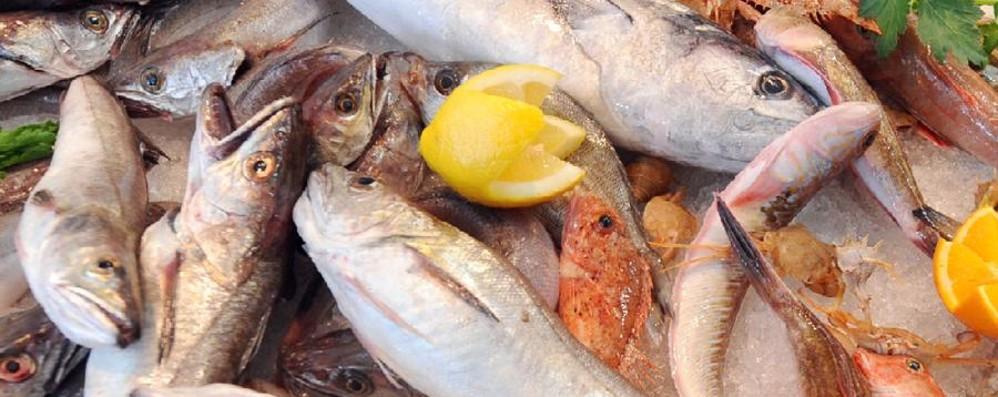 Dal pesce alla carne fino ai pistacchi Coldiretti e la lista nera dei cibi pericolosi