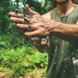 Cresce la «voglia» di agricoltura Ma nella Bergamasca manca la terra