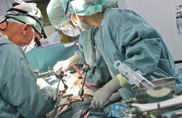 Operazione chirurgica di trapianto