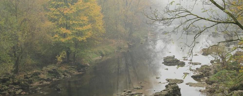 Meteo, fine settimana di sole e freddo E in pianura attenti alla nebbia