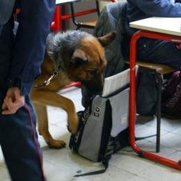 Romano, controlli antidroga a scuola Due studenti con marijuana e hashish