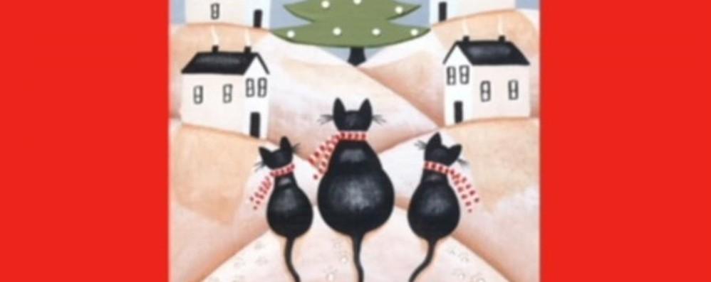 Domenica tutti al gattile Festa con gli amici a quattro zampe