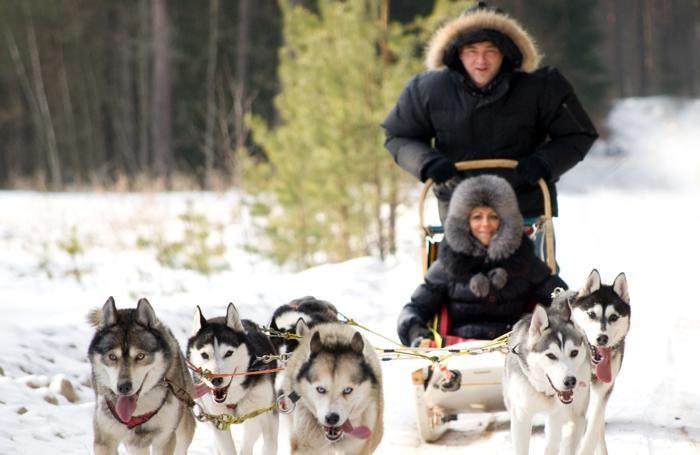 Avventure con gli husky