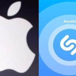 Apple compra Shazam Ma il «prezzo» delude gli investitori