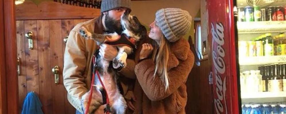 Ritrovata la cagnolina Wanda Si era persa sui monti da giorni