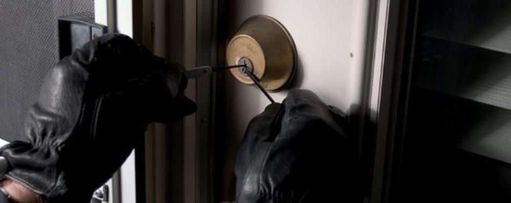 In un giorno mette a segno cinque furti Poi confessa: «Non so cosa mi è preso»