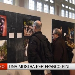 L'opera di Franco Pini, una mostra all'Ex Ateneo