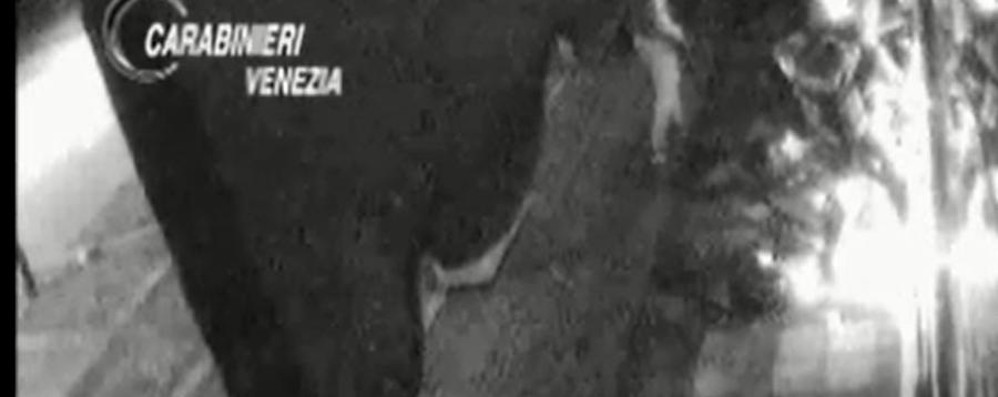 Razzie nei cantieri, sgominata gang Quattro arresti nella Bergamasca -Video