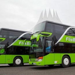 Il Senato «stoppa» Flixbus Viaggi low cost a rischio