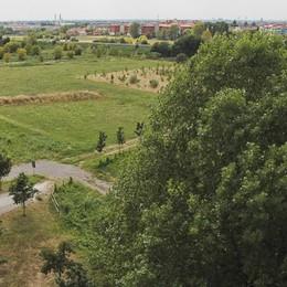 Sei aree verdi da rimettere a nuovo Lavori per due milioni a Bergamo
