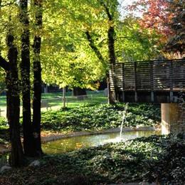 Aria e verde urbano, Bergamo non brilla  Domenica i dati su «eco.bergamo»
