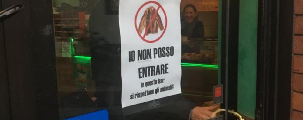 Il bar che mette al bando le pellicce Sulla porta c'è  «Io non posso entrare»
