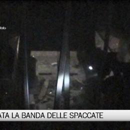 Bergamo, fermata la 'banda delle spaccate': aveva colpito anche Curnis