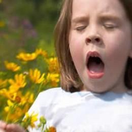 Primavera, torna l'allarme allergie Ecco qualche consiglio per difendersi