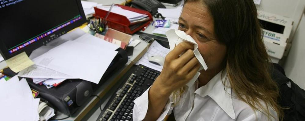 Allergia agli acari: in arrivo una pillola   Ne soffre un italiano su tre