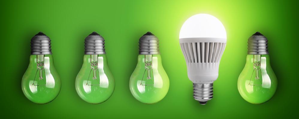 Lampadine, quali conviene scegliere? Con «eco.bergamo» una guida alla luce
