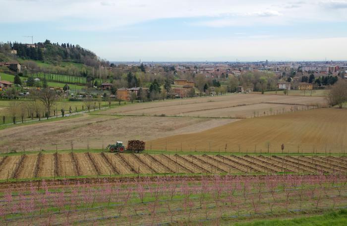 gli orti della Valle d'Astino a Bergamo
