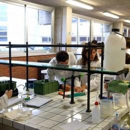Scuola-lavoro, il Natta sale sul podio Ricerca sui biopolimeri premiata a Roma