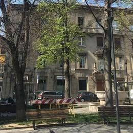 Due faggi malati in piazza Sant'Anna Saranno tagliati e poi sostituiti